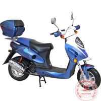 Quality LPG Motor Scooter WZLPG1255 for sale