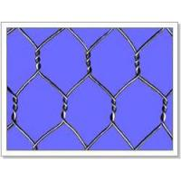 Quality PRODUCT CATALOG: Hexagonal Wire Netting for sale