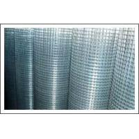 Quality Welded wire mesh for sale