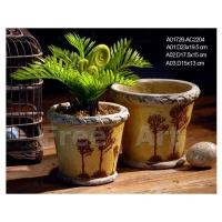 Buy cheap Flowerpot / Plant from Wholesalers