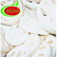 Vegetables Product Name:IQFSLICEDLOTUSROOT