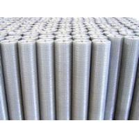 Quality Galvanized Welded Meshes Galvanized Welded Mesh for sale