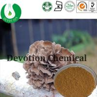 Quality Maitake Mushroom Extract for sale