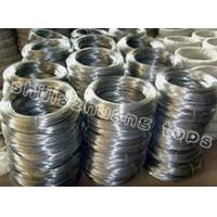 Quality Galvanized Wire / Black Iron Wire/Pvc coated Wire for sale