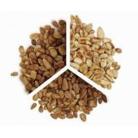 pine nut shelling machine