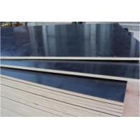 Quality high quality Black filfaced panel for sale
