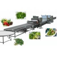Quality Food machine Furit & Vegetable Cleaning Machine for sale