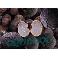 Quality Dried Truffle for sale
