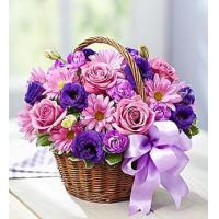 Quality Basket of Blooms for sale