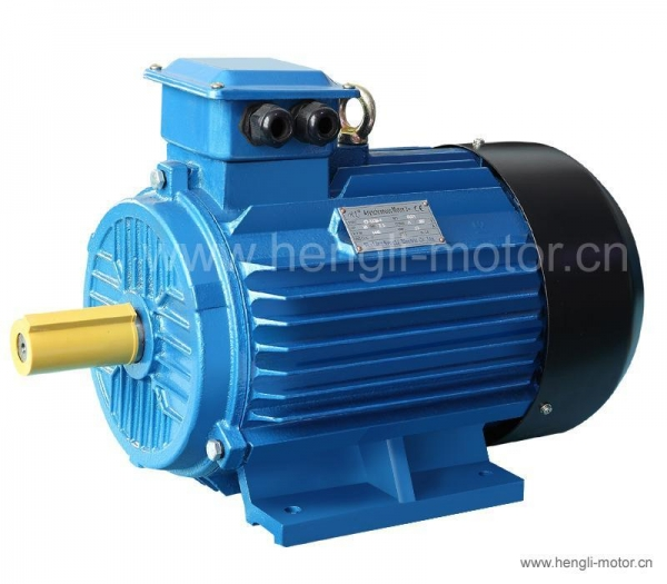 Three Phase Induction Motor Hl Y2 Series Of Hengli Motor