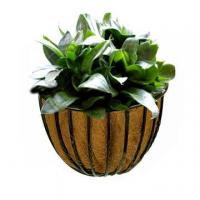 Quality Wall Hayracks Planter for sale