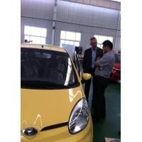 Quality EEC/COC 100km Speed, 10KW AC motor Electric Car TS100089 for sale