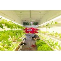 Quality Hydroponic Farming Prefab Container Homes , Movable Modular Container Homes for sale