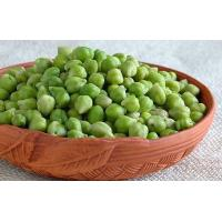 Quality Frozen Green Grams for sale