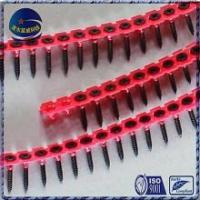 China Screw Collated drywall screws on sale