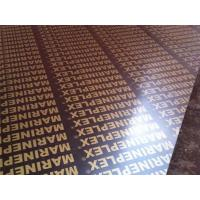 Quality 4x8 finger joint film faced plywood for sale