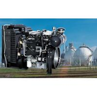 Diesel and Gas Engines (for Gensets) Natural Gas Engine for Gensets, 1000 Series