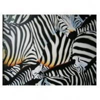 Zebra Pure hand-painted oil painting