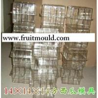 sell square watermelon molds