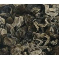 Quality Black Fungus Agaric for sale