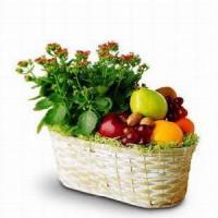 Quality Fruit and Flowers Basket NO.14 delivery gift basket to taiwan for sale