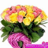 Quality Pink and Yellow Roses NO.31 shanghai flower delivery for sale