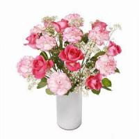 Quality Rose and Carnation NO.14 deliver flower to shanghai for sale