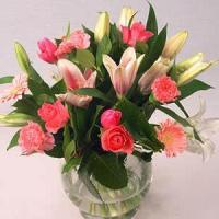 Quality Pink Beauty NO.70 deliver flower to shanghai for sale