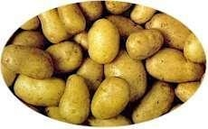 Buy Potatoes at wholesale prices