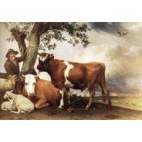 Quality Oil Painting y_bull for sale