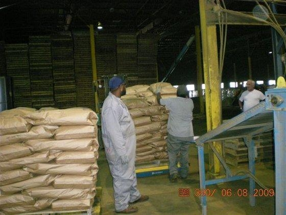 Fish meal above 62 protein of eczim ex for Fish meal for sale