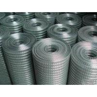 Quality Galvanzied Welded Wire Mes for sale