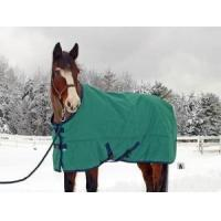 Quality Tempest Turnout Blanket for sale