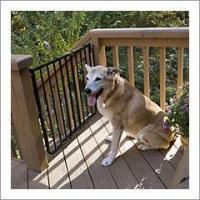 Quality Cardinal Stairway Dog Gate for sale
