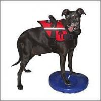 Buy cheap FitPAWS Canine Balance Disc from wholesalers