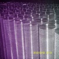 Quality Sales Welded Wire Mesh for sale