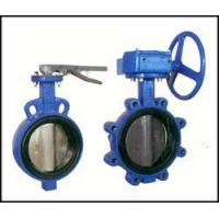 Quality Bi-axial butterfly valve witho for sale