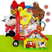China Baby Einstein Day on the Farm Baby Gift Basket on sale
