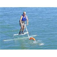 Buy cheap Water Bird Sea Scooter from Wholesalers