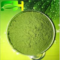Quality Medecines & Health Products Barley Grass Juice Powder for sale