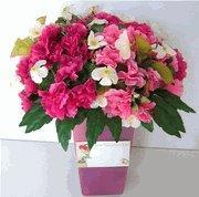 Buy cheap Get Well Gift Baskets from wholesalers
