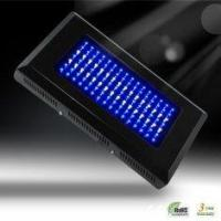 Professional IP68 50 - 60Hz 120W LED Plant Growing Lamp / Plant Grow Lights 1M/2200