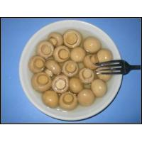 Quality Canned fruits mushroomwhole for sale