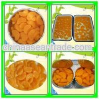 Quality Agriculture Fresh Mandrine Canned Orange for sale