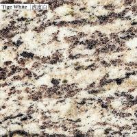 Quality China Granite tiger white for sale