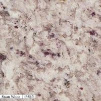 Quality China Granite swan white for sale