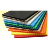 Quality Common Corrugated Plastic Sheet for sale