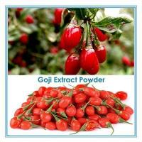 Quality Natural instant wolfberry powder fruit powder for sale
