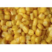 Safety Frozen Sweet Corn Kernels Organic Fruit With 8 - 13% Sweetness