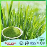 Quality Barley Grass Extract for sale